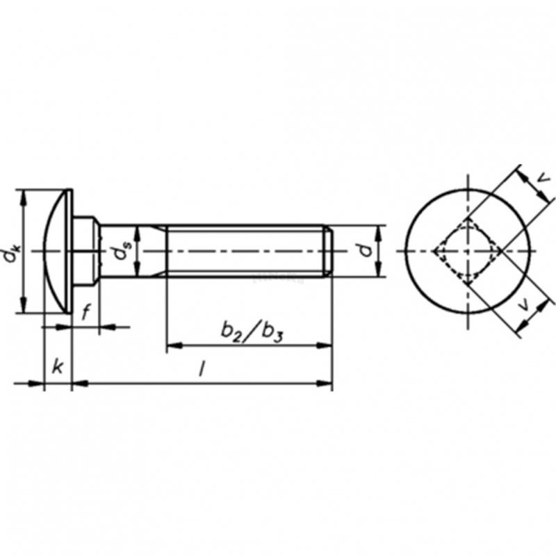 Flachrundschrauben mit Vierkantansatz ohne Mutter DIN 603 A2 - M5x25 - 200 Stk